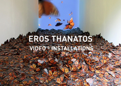Eros Thanatos